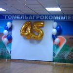 Украшение дня рождения, юбилея, корпоратива №76