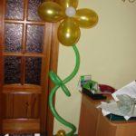 Украшение дня рождения, юбилея, корпоратива №34